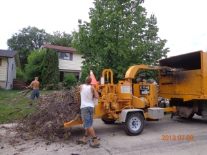 Wood chipper (photo: Carissa Hickling)