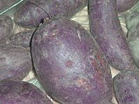 Purple Sweet Potato (Wikepedia)