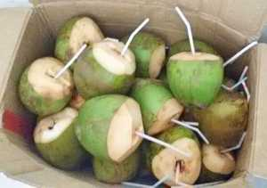 Welcomed with refreshing coconut water