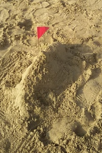 Not sure this qualifies as a sand castle?