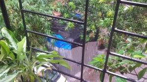 Monsoon proof?