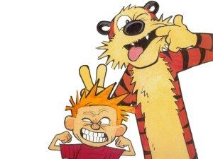 Calvin Hobbes_unhappy