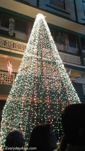 St Peter's Christmas Tree, Bandra